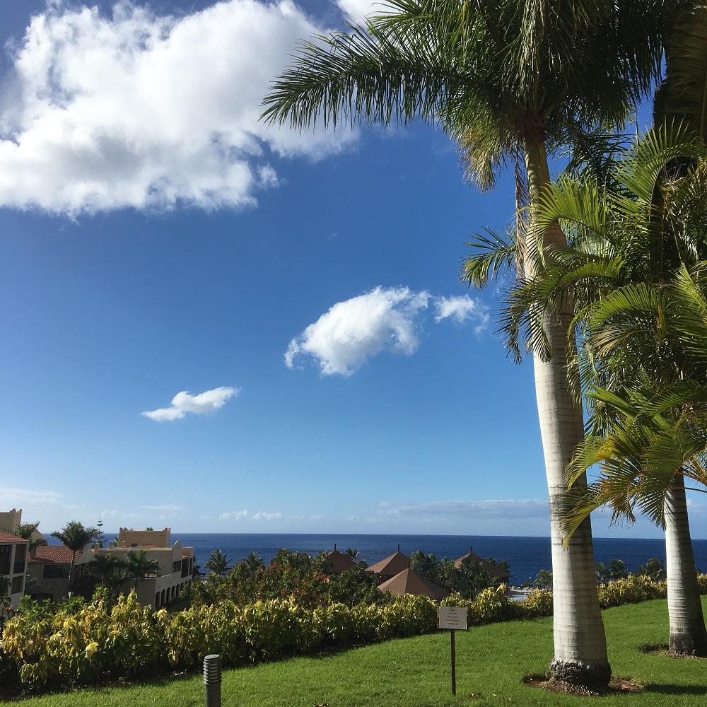 Reise nach La Palma Ausblick von der Terrasse Sunnyside-of-life