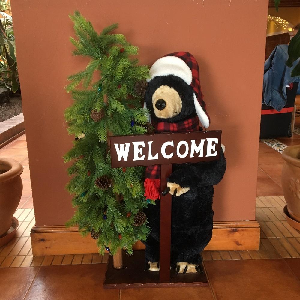 Die Reise nach La Palma - Teil 2 Welcome-Schild mit Stoffbär - Sunnyside-of-life