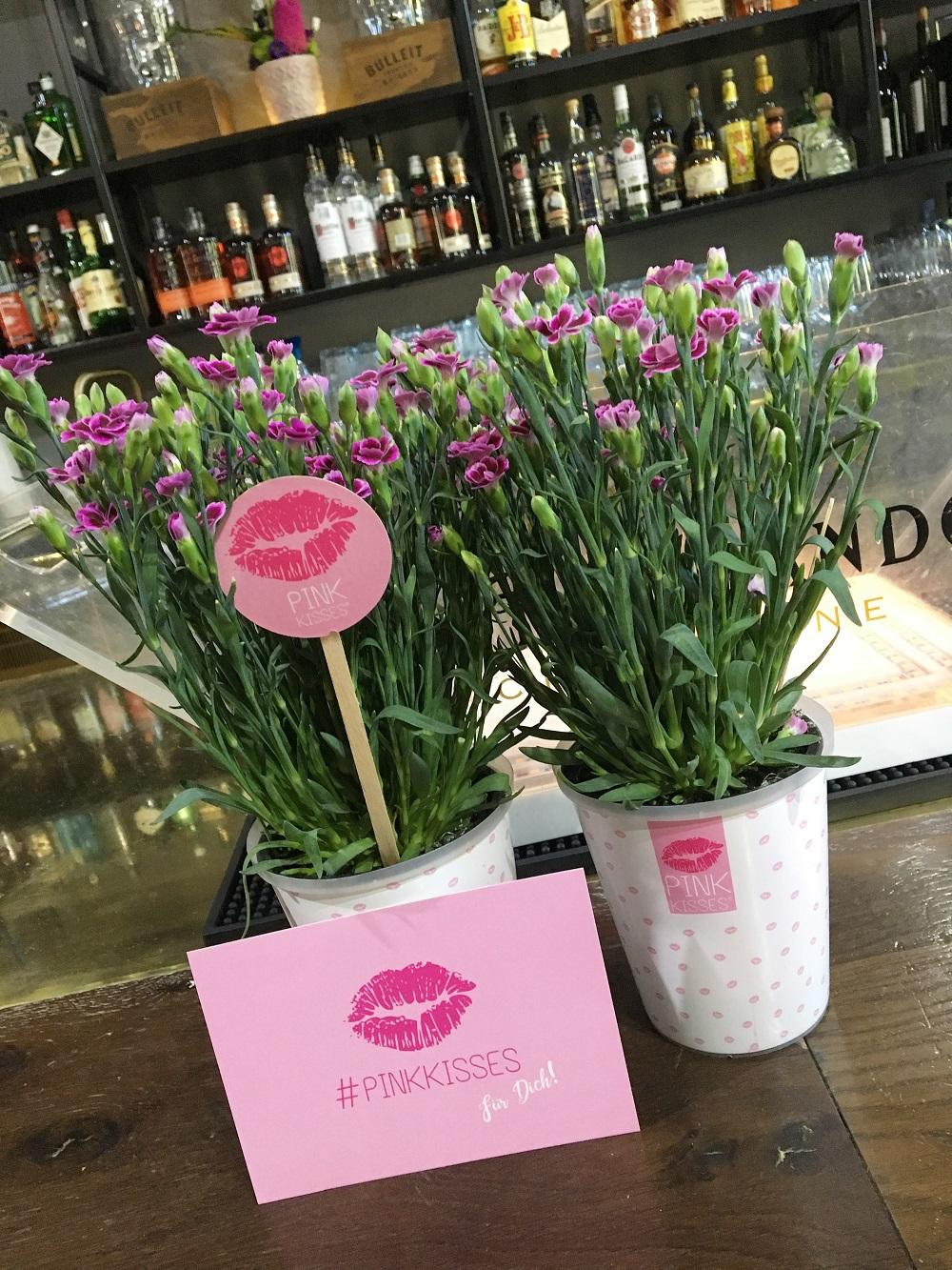 Green Cosmetics Bloggerevent zwei Blumentöpfe mit PinkKisses Mininelken